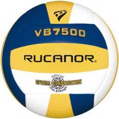 Volleyball