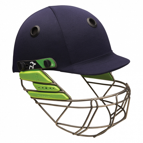 Cricket Protection